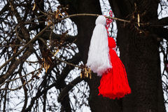 Bulgarian martenitsa on a tree Stock Photography