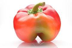 Bulgarian pepper Stock Photography