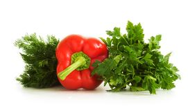 Bulgarian pepper, dill, parsley Stock Photography