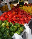 Bulgarian peppers are red, yellow and green are on the counter in the market.  Royalty Free Stock Photo
