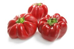 Bulgarian Red pepper's Stock Images