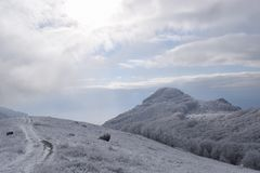 Bulgarian snow cover in Sliven. Bulgaria royalty free stock photos