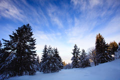 Bulgarian snow landscape Royalty Free Stock Image