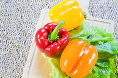 Bulgarian sweet pepper of red and yellow color Stock Photos
