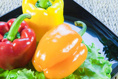 Bulgarian sweet pepper of red and yellow color Stock Photo