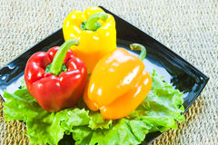 Bulgarian sweet pepper of red and yellow color Royalty Free Stock Photography