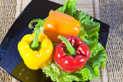 Bulgarian sweet pepper of red and yellow color Royalty Free Stock Photo