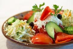 bulgarian white för grönsak för ostfetasallad Royaltyfri Bild