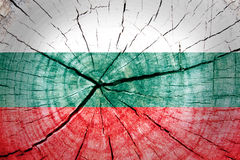 Bulgarien-Flagge Stockfotos