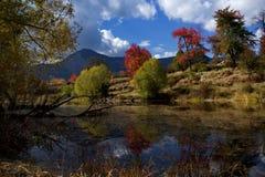 Bulgarien Smolyan sjöar Arkivbilder
