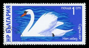 Bulgarien-` Wasservögel ` ReihenBriefmarke, 1976 Lizenzfreies Stockfoto