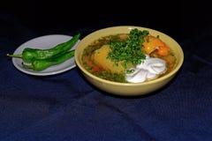Bulgarischer Pfeffer angefüllt mit Fleisch und Reis lizenzfreies stockfoto