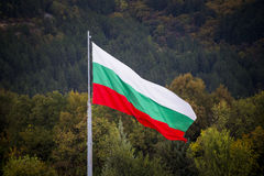 Bulgarisk flagga som vinkar i vinden Royaltyfri Fotografi