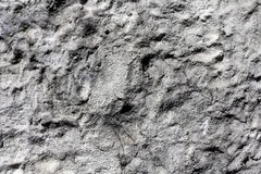 Bulge black and white stone texture. Used for design and backgrounds royalty free stock images