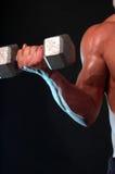 Bulgeing biceps Stock Photo