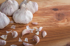 Bulgs of garlic on wooden table Stock Image