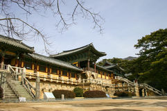 bulguksakorea södra tempel Royaltyfri Fotografi