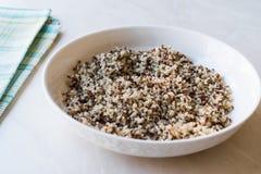 Bulgur Chia Food Mix della quinoa in ciotola/alimento ad alta percentuale proteica della fibra Fotografia Stock Libera da Diritti