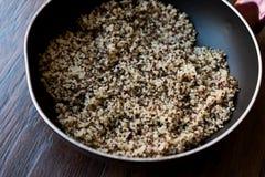 Bulgur Chia Food Mix della quinoa in pentola/alimento della fibra Fotografia Stock Libera da Diritti