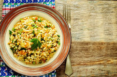 Bulgur with eggplant and greens Royalty Free Stock Photography