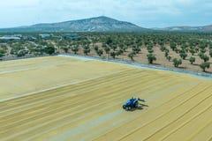 Bulgur tarweverwerking in Gaziantep, Turkije stock afbeeldingen