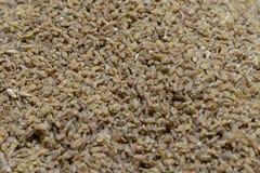 Bulgur wheat background. royalty free stock images
