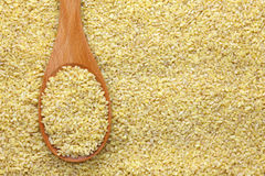 Bulgur wheat in a wooden spoon Stock Photography