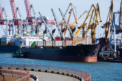 Bulk carrier. Lids open moored royalty free stock photography
