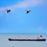 Bulk Carrier Ship Stock Image