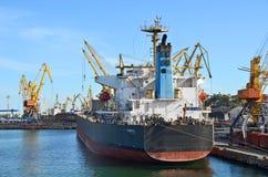 Bulk lastfartyg under portkranen Royaltyfri Foto