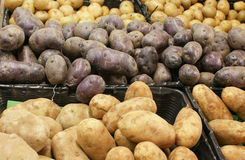Bulk Potatoes Stock Image