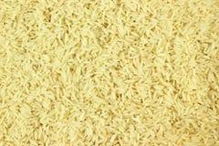 Bulk rice Fotografering för Bildbyråer