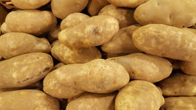 Bulk Russet Potatoes Royalty Free Stock Images