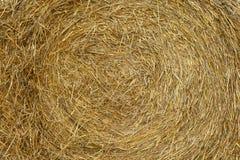 Bulk of straw. Texture of yellow straw bulk Royalty Free Stock Image