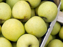 Bulk, wholesale Golden Delicious eating apples. Harvested and packed. Stock Photography