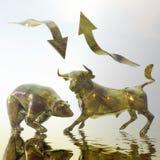Bull и медведь Стоковые Изображения