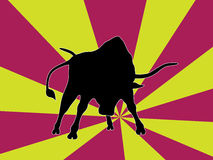 The Bull Stock Images