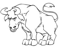 Bull. In black and white Stock Image