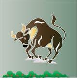 Bull Fotografía de archivo libre de regalías