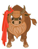 Bull. The bull with a red raincoat Stock Images