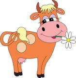 Bull libre illustration