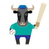 Bull baseball player Stock Image