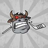 Bull bites hockey stick Stock Image