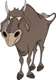 Bull. Cartoon Stock Image
