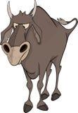 Bull. Cartoon Image stock