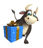 Bull cartoon character  with gift box Royalty Free Stock Photos