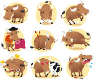 Bull cartoon illustration set. Cartoon Bull action set, with bull in different situations like standing bull, in love bull, bull with birds, bull and cow, in Stock Images