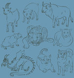 Bull, cat, dog, goat, dragon, pig, rat, sheep, tiger Stock Image