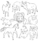 Bull, cat, dog, goat, horse, pig, rat, sheep, tiger Royalty Free Stock Images
