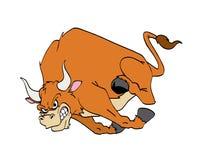Bull Charging. Hand drawn cartoon of a fierce raging bull charging Stock Photography
